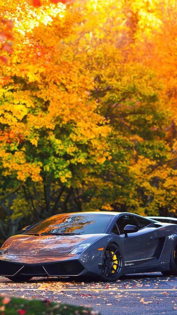 lamborghini autumn gallardo 720x1280 576x1024 - Fondos de Pantalla de Lamborghini
