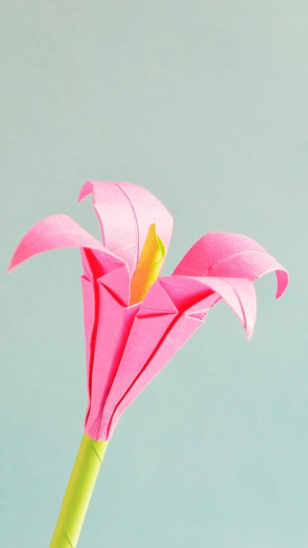 pink petaled flower 5k 3j 1080x1920 1 768x1365 - +84 Fondos de Pantallas femeninos (para chicas)