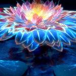 lotus flower digital art 4k zd 1080x1920 1 150x150 - 25 Fondos de Pantalla Neón que harán ver tu pantalla increible