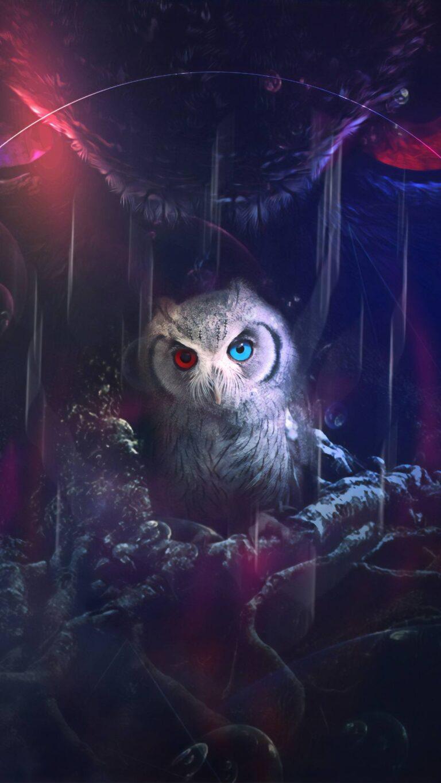 owl 8k e5 1080x1920 1 768x1365 - Fondos de pantalla Full Color, Neón y Psicodélicos